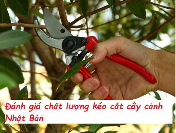 Kéo cắt cây cảnh Nhật Bản