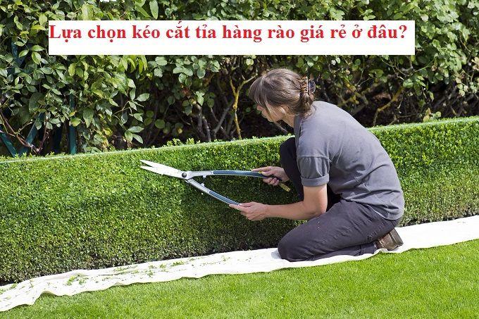 Kéo cắt tỉa hàng rào